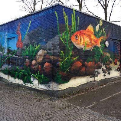 Transwijk Aquarium