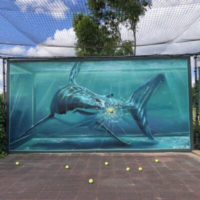 Tennisclub TVSET Schalkwijk