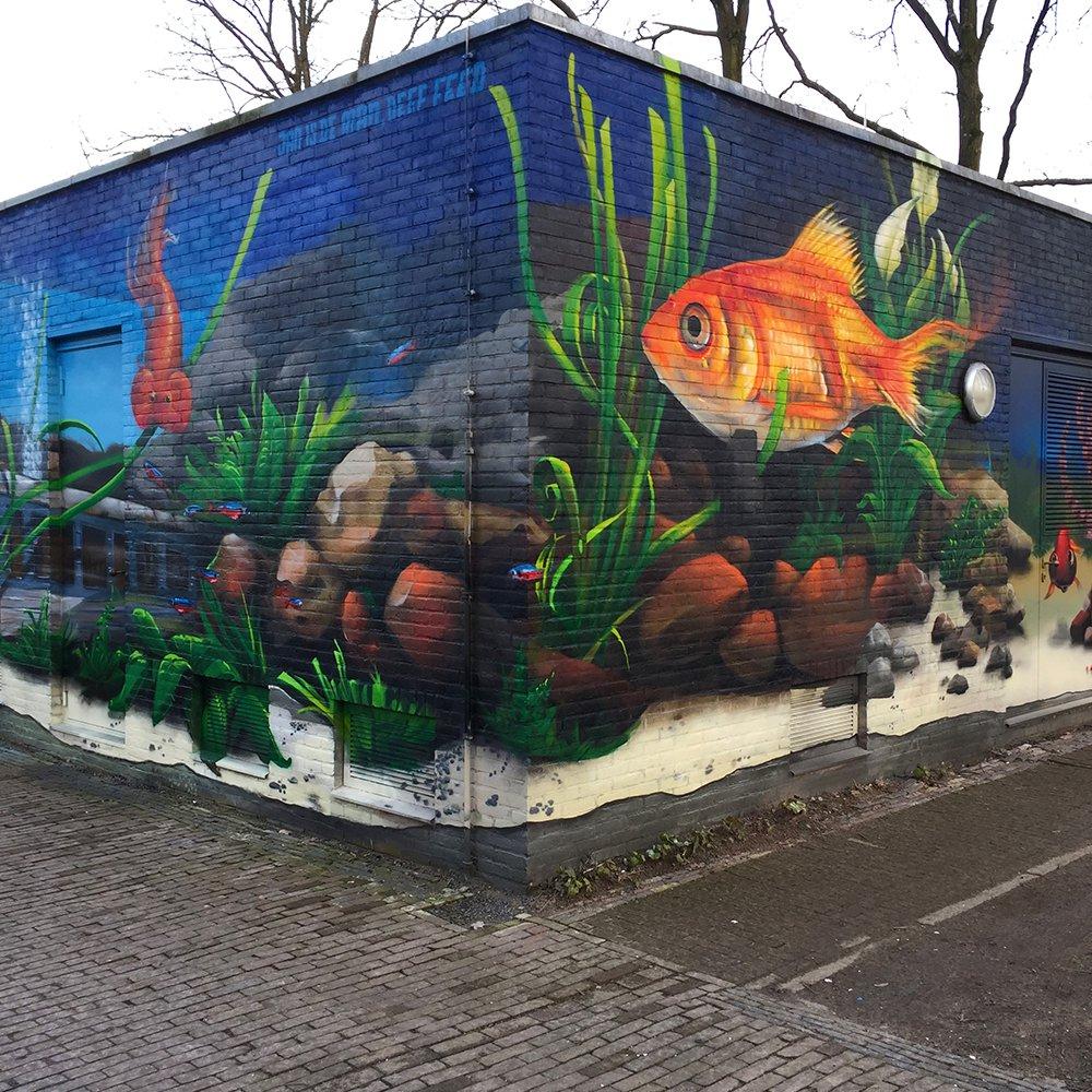 Transwijk Aquarium met Deef Feed